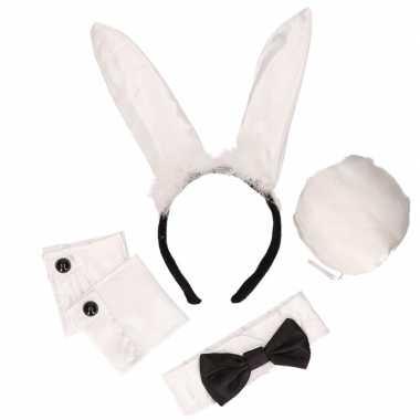 Bunny playboy kostuumje