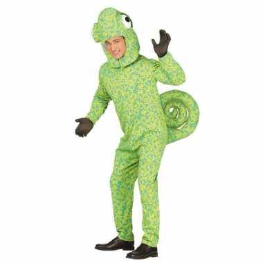 Groen kameleon kostuum volwassenen