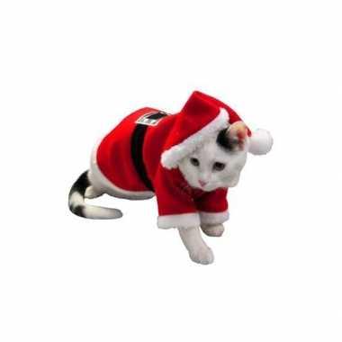 Kerst kostuum hond of kat
