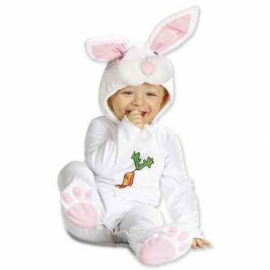 Kostuum konijntje dreumes