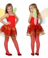 Vlinder kostuum kinderen